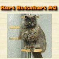 Kurt Betschart AG, Schreinerei & Glaserei